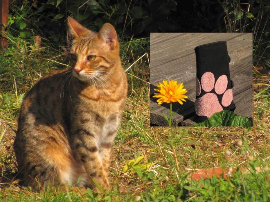 Mind-Factor Armschutz Leder – Katzenpfote
